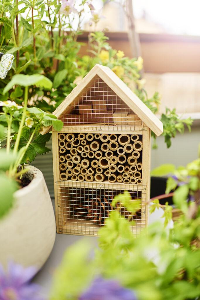 Klimatsmart trädgård biodling